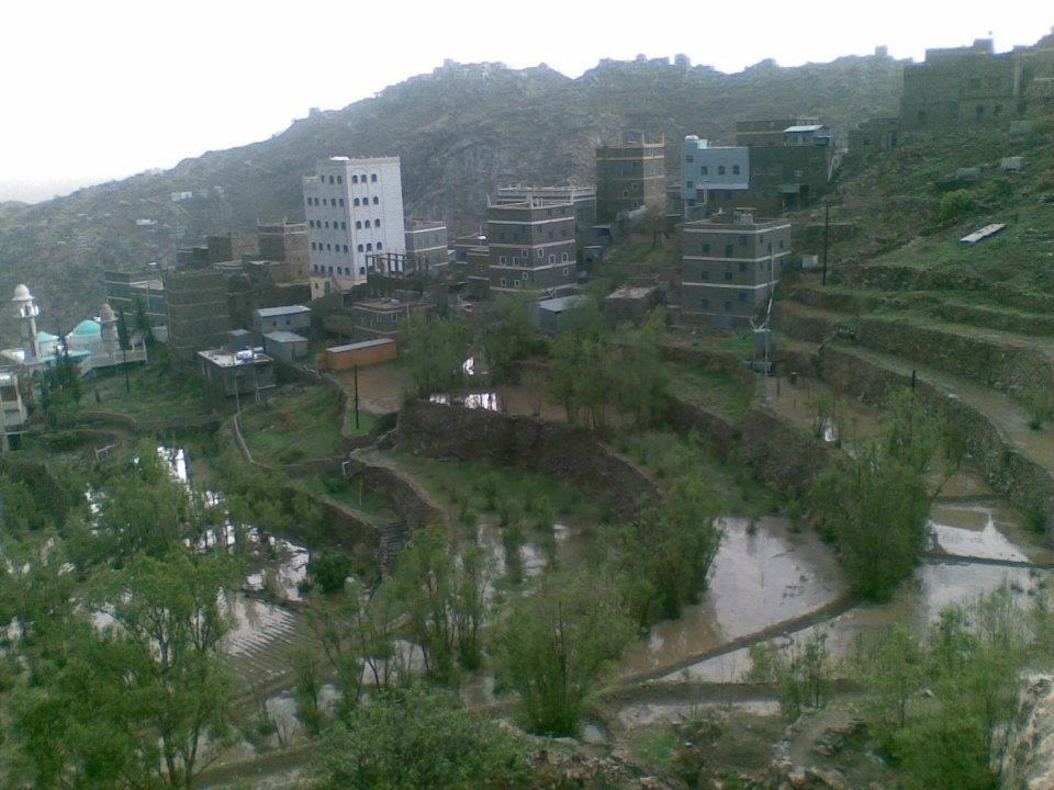 Photo of الأرصاد: استمرار هطول الأمطار الرعدية على مناطق واسعة من البلاد