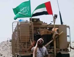 Photo of باحث أمريكي: السعودية متوترة من تواجد الاماراتيين على الأرض والبحر في اليمن وأنصار الله لايمكن استبعادهم من ترتيبات الأمن القومي السعودي
