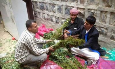 Photo of قرار بمنع تعاطي القات نهائيا في احدى المحافظات اليمنية