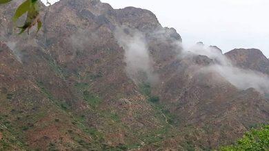 Photo of الأرصاد يتوقع هطول أمطار على عدة مناطق وارتفاع ملحوظ في درجات الحرارة