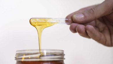 Photo of دراسة بريطانية: العسل أفضل من المضادات الحيوية لعلاج البرد والسعال