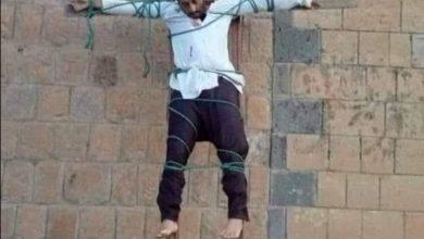 Photo of القاعدة تظهر مرة أخرى في البيضاء عبر صلب طبيب في مديرية الصومعة
