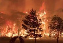 Photo of نصف مليون يستعدون لإجلاء جماعي من ولاية امريكية بسبب الحرائق