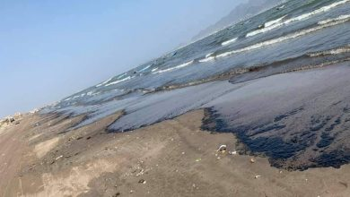 Photo of ظهور تلوث بحري في سواحل عدن