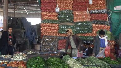 Photo of أسعار الخضروات والفواكه في عدد من الأسواق اليمنية بالتجزئة والجملة الاثنين 26 أكتوبر/تشرين أول 2020