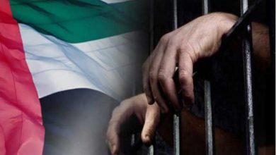 Photo of وكالة امريكية تكشف عن خطة لنقل معتقلين سابقين في غوانتانامو من الإمارات إلى اليمن بسبب سوء المعاملة والانتهاكات