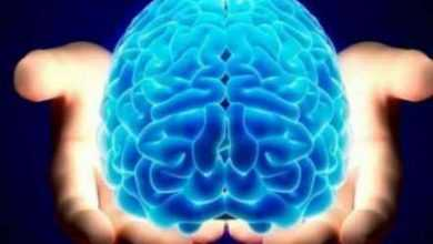 Photo of أفضل الأطعمة والعادات اليومية لتعزيز قوة الدماغ